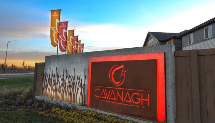 Dv2 Cavanagh imag01 1024x683