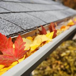 Unbe-leaf-able fall home maintenance tips!